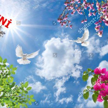 Gergi Tavan Kuşlu Gökyüzü