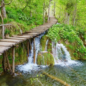 Gergi Tavan Şelale ve Orman Fotoğrafları