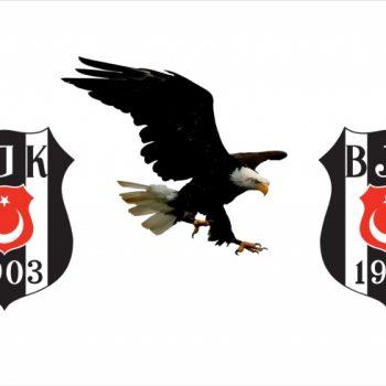 Gergi Tavan Taraftar Görselleri Beşiktaş